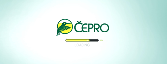 p03_cepro02